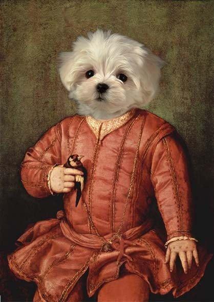 quadro di cane vestito